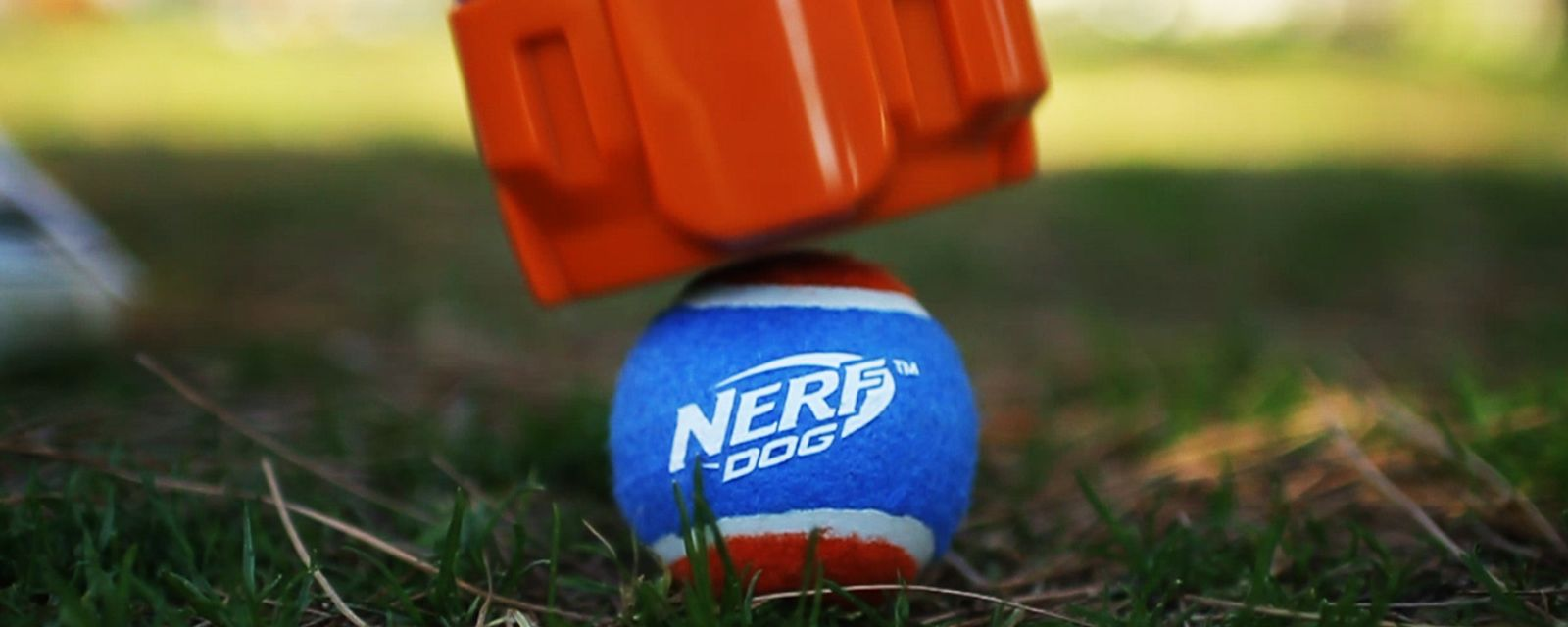 Community | NERF DOG | Gramercy Products – Our Values