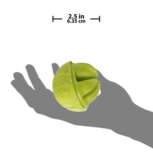 2.5in_Foam_Turtle_Ball_green-scale
